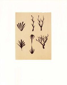 Francesco Clemente #3  Book Plate 11.5 x 9  49.