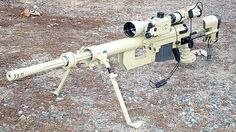 Hunting cheat. 50 cal. cheytac intervention