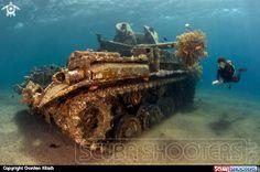 Gorden Klisch  Underwater photography on Scubashooters.net