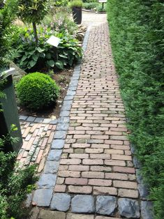Garden Pavement idea | Kinderkoppen, waaltjes | Tuinpad