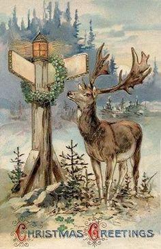 Vintage Christmas postcard, moose at crossroads sign Vintage Christmas Images, Christmas Scenes, Christmas Deer, Victorian Christmas, Retro Christmas, Vintage Holiday, Christmas Pictures, Christmas Greetings, Country Christmas