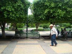 Plaza Arechiga Jalpa Zacatecas