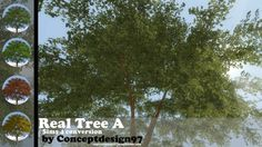 Real Tree A at ConceptDesign97 via Sims 4 Updates