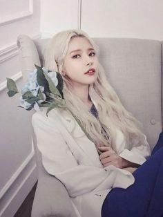 Check out Mamamoo @ Iomoio Kpop Girl Groups, Korean Girl Groups, Kpop Girls, Solar Mamamoo, Cool Girl, My Girl, Mamamoo Kpop, Actors, South Korean Girls