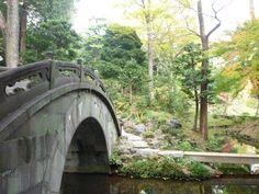 「Koishikawa-Korakuen」(Garden) Tokyo Japan