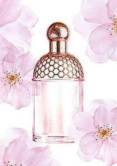 Aqua Allegoria Cherry Blossom Guerlain.  Sunny notes of these fragrances are an excellent introduction to spring. Petals which flutter and touch in gentle, spring breeze stay playful and charming as the fragrance itself. This feminine, spring composition includes bergamot and cherry blossom petals, along with green tea and peach. Gentle, powdery fragrance cloud is rounded up with delicate almond aromas. The fragrance is available as 75ml EDT.