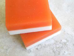 Vendita  frutta loop Soap  dolce profumato Kids di GingerGreySoaps