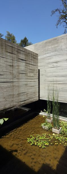 Hormigón armado con esencia doméstica, por el estudio BAK Arquitectos - Interiores Minimalistas