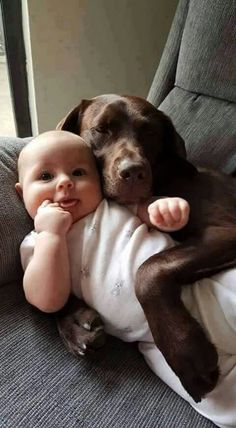 This baby and this Lab are best friends . the amount of love between them is enormous ...