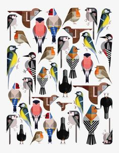 trendy Ideas for bird illustration drawing charley harper Art And Illustration, Pattern Illustration, Vogel Quilt, Bird Quilt, Bird Patterns, Bird Drawings, Bird Design, Bird Prints, Animal Prints
