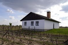 Tonković Winery