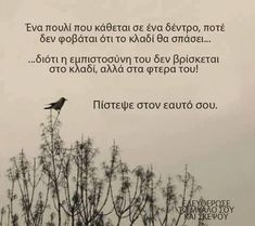 Find images and videos about greek ελληνικά guotes on We Heart It - the app to get lost in what you love. Smart Quotes, Clever Quotes, Cute Quotes, Happy Quotes, Funny Quotes, Advice Quotes, Wisdom Quotes, Book Quotes, Words Quotes