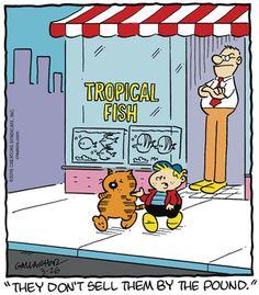Heathcliff Comic Strip on GoComics.com