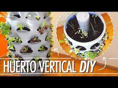 Idea genial para cultivar fresas en botella de plástico en forma de pirámide - YouTube