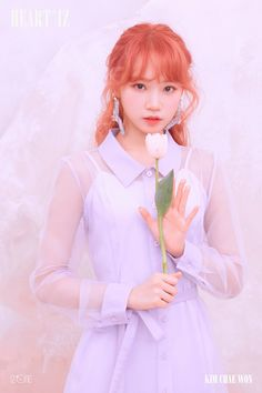 IZ*ONE will release their second Korean EP titled HEART*IZ on April and they released two sets of concept/teaser photos. See the photos of the IZ*One members below! Kpop Girl Groups, Kpop Girls, Yuri, Honda, Pre Debut, Sakura, Japanese Girl Group, Kim Min, First Photo