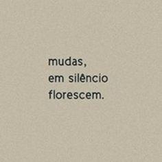 Mudas, em silêncio florescem. #frases #citações