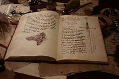 Frodo Bolsón. Credit: Libro Rojo de la Frontera del Oeste