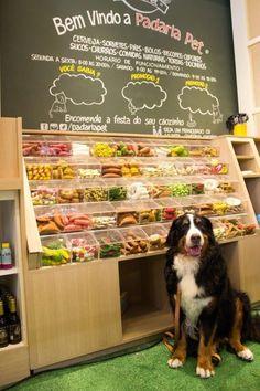 34 provas de que o Brasil fugiu completamente do nosso controle Dog Grooming Shop, Dog Grooming Salons, Dog Shop, Animal Room, Pet Store Display, Pet Food Store, Dog Pet Store, Pet Cafe, Pet Hotel