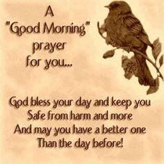 A Good Morning Prayer For You. Have a Blessed day. Morning Prayer Quotes, Good Morning Prayer, Morning Greetings Quotes, Morning Blessings, Good Morning Good Night, Morning Prayers, Good Morning Wishes, Morning Messages, Good Morning Quotes