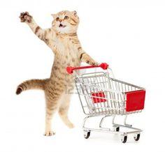 Shopping Cart Development Canada