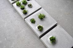 Grey to Green Pavers by Caroline Brahme The project is an attempt to integrate green infrastructure into cities more efficiently.