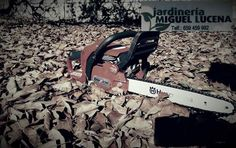 Prepara tu jardín para el otoño. jardinería M.Lucena Jardineria Miguel Lucena 🌿🍂🌾Aprovechemos el otoño para plantación y trasplante, podas de arbustos, hierbas y matas perednes, recorte de setos y preparación buena de cesped.