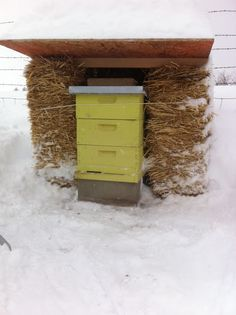 Backyard Farmgals: Keeping Bees Through the Winter. Bee Hive Plans, Raising Bees, Buzz Bee, Bee Boxes, Bee Farm, Backyard Beekeeping, Birds And The Bees, Bee Friendly, Hobby Farms