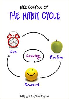 Take Control of The Habit Cycle!