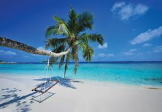 An all-inclusive seven-night holiday at a five-star villa resort in the Maldives, with flights and speedboat transfers