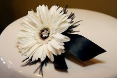Gerbera daisy black and white corsage