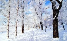 Winter Nature Photography For Desktop Background 13 HD Wallpapers