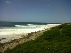 Great day surfing