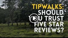 Should You Trust Five Star Reviews? [VLOG]  TipWalks  http://videotutorials411.com/should-you-trust-five-star-reviews-vlog-tipwalks/  #Photoshop #adobe #lightroom #graphicdesign #photography