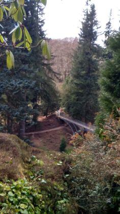 Cragside - Iron bridge