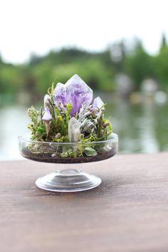 RESERVED - Miniature Amethyst & Quartz Terrarium - Elestial Twin Amethyst, Faerie Garden, Tiny Garden, Miniature mushrooms