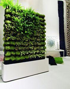 Portable hydroponic wall