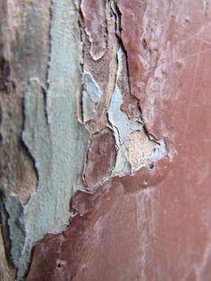 De structuur is hout en de factuur is dat het geschilderd is.