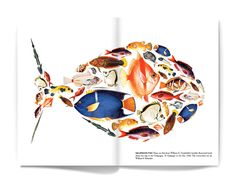 university of virginia library annual report : matt chase Environmental Report, Darwin's Theory Of Evolution, Darwin Theory, Annual Report Design, Communication Art, University Of Virginia, Prop Styling, Fish Design, Fish Art