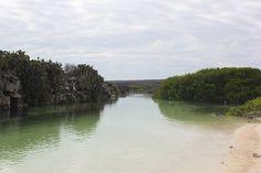 Darwin Bay. #Galapagos #Cruises #Nature #Landscapes #NemoCruises #Travel #Islands