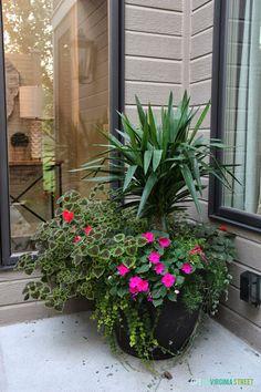 Fall Planter Inspiration - Life On Virginia Street