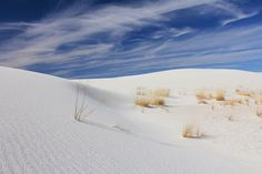 Die weißen Sandberge in New Mexico gehören zu den schönsten Landschaften der USA. Wunderschön zum Wandern (aber nur mit ausreichend Wasser im Gepäck!) oder einfach nur Abschalten. Und der Sonnenuntergang im White Sands National Monument ist atemberaubend.  Weitere Eindrücke von unserer Reise gibt es morgen wieder bei @francy_knipst. __________ The White Sands desert of New Mexico is one of the prettiest landscapes in all if the U.S. It's great for hiking (but bring enough water!) or just…