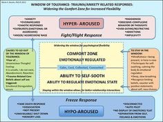 Techniques for Staying in our Window of Tolerance, and understanding what happens to us when we are not. Dr. Marie Dezelic www.DrMarieDezelic.com