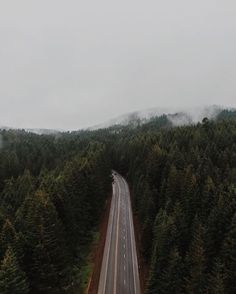 On the road again.  #Oregon #1924us #travel #explore #go #adventure #coffee #camping #ventureonward #people #lifestyle #getit #forest #mountains #fog
