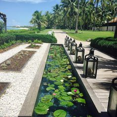 "53 Likes, 3 Comments - Rachel Arena (@rachelarenatravel) on Instagram: ""One & Only Ocean Club 🏝 Paradise Island, Nassau Bahamas ✨ Best scones west of the Atlantic #travel…"""