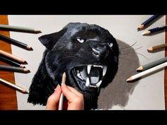 3D Pencil Drawing: Roaring Black Panther - Speed Draw   Jasmina Susak - YouTube