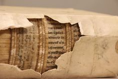 "X-Rays Reveal ""Hidden Library"" on the Spines of Early Books Researchers are uncovering fragments of medieval texts used in early book binding Medieval Books, Medieval Manuscript, Illuminated Manuscript, Old Books, Antique Books, I Love Books, Books To Read, Menue Design, Book Art"