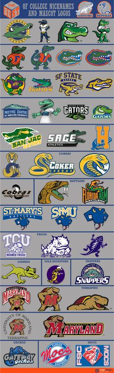 The Best of College Nicknames and Mascots logos College Football Logos, Sports Team Logos, College Sport, Football Logo Design, Inspiration Logo Design, Sports Decals, Sports Graphic Design, Logo Sign, Great Logos