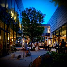 """DAIKANYAMA T-SITE in 渋谷区, 東京都 (""""A library in the woods"""", you can read everything in a cafe before you buy, seems to be such a cool place!!!)"""