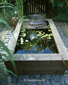 raised wooden pond with waterlilies and Slate water feature. Design by Geo Designs