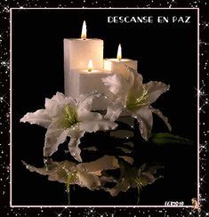 Good Night my Dearest Friends - Top Foto Candle Lanterns, Pillar Candles, Beautiful Candles, Beautiful Flowers, Beau Gif, Star Candle, Candle Magic, Good Night, Birthday Wishes